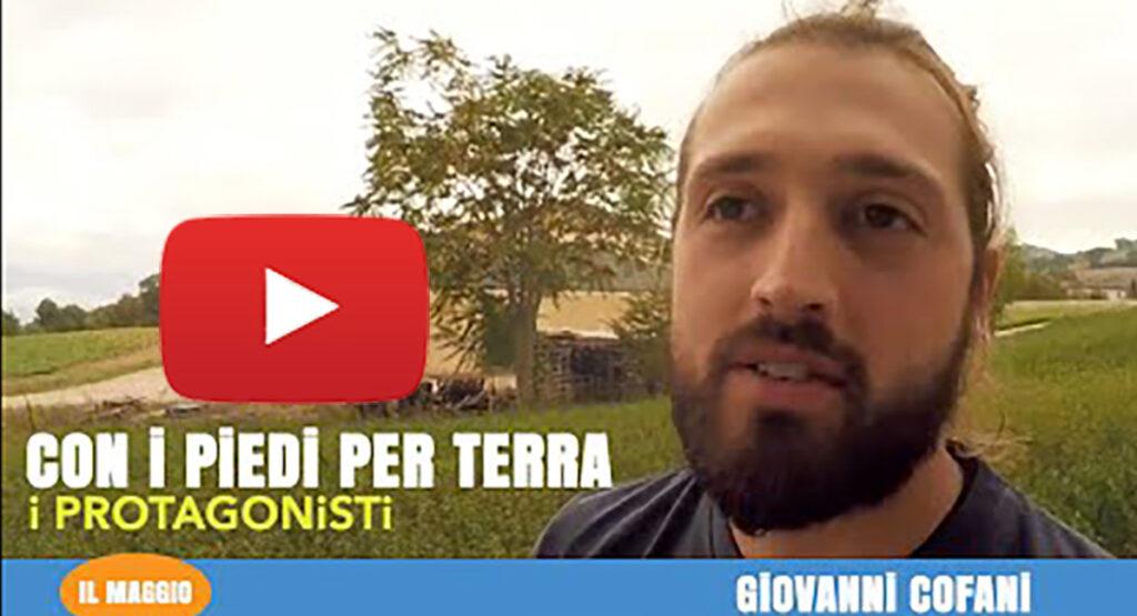 Giovanni Cofani